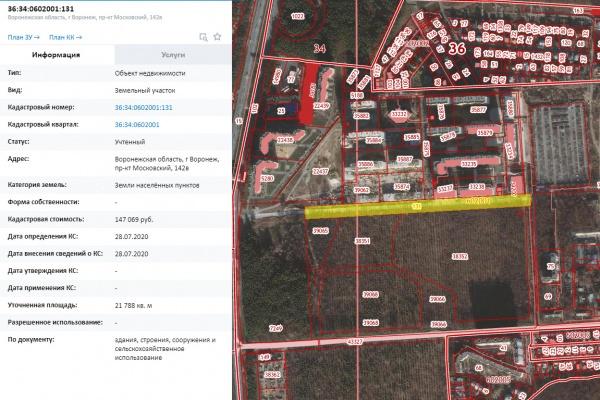 Дорогу около воронежских яблоневых садов спроектирует фирма из Ростова
