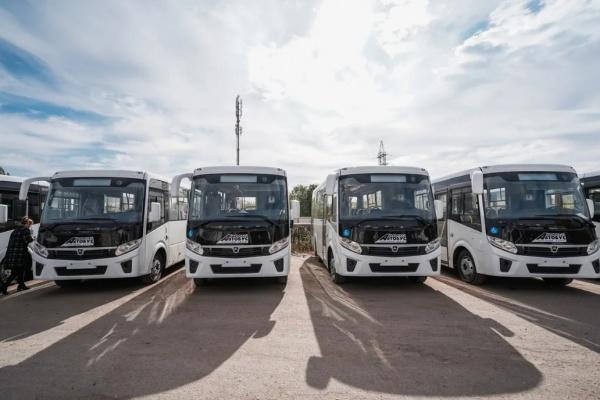 На воронежские маршруты выйдут сразу 12 новых автобусов