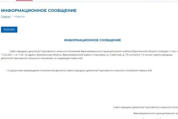 Депутат воронежского села лишилась мандата из-за закона о коррупции