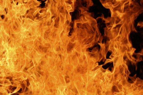9 районов Воронежской области охвачены природными пожарами