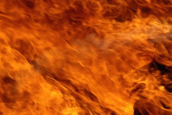 В Воронежской области  при пожаре пострадали два человека