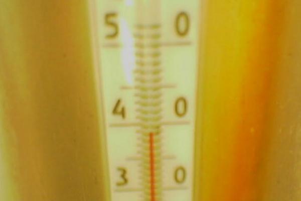 В Воронежской области аномальная жара продержится еще минимум два дня