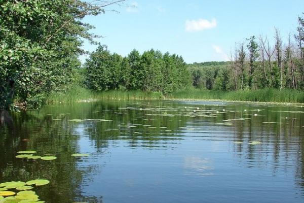 рыбалка на малых реках воронежской области