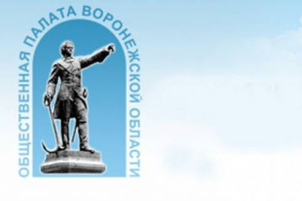Воронежская общественная палата станет жить богаче