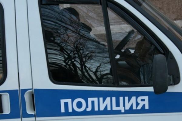 В Воронежской области «украденный» мальчик «нашелся» у отца