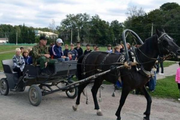 Налоговики Воронежской области устроили для детей из интерната экскурсию на конный завод