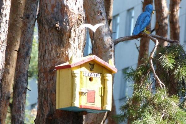 В воронежском парке «Алые паруса» для птиц сделали кинотеатры, банки и даже туалеты