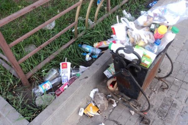 Из центра Воронежа после юбилея вывезли более 5 вагонов мусора