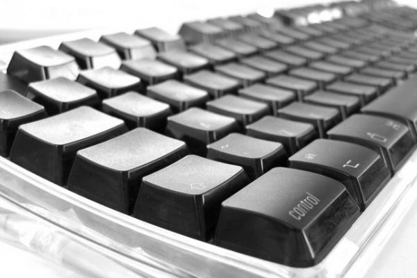 С 1 октября воронежская полиция будет предоставлять госуслуги в электронном виде
