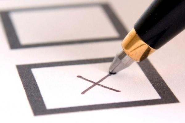 Воронежские партийцы договорились о «честных выборах»