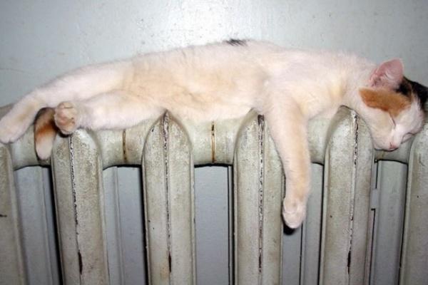 Воронежские коммунальщики не включают тепло в домах, ссылаясь на скорое потепление