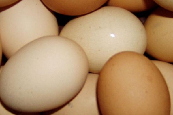 В Воронеже суд и УФАС заставили торговать «Копейку» местными яйцами