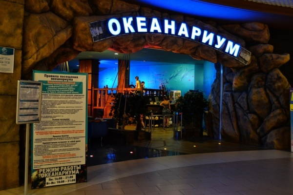 Воронежский океанариум  стал одним из лучших в Европе