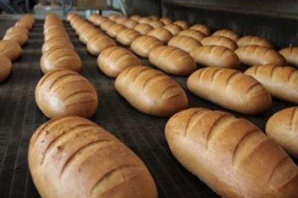 В Воронеже хлеб проверили на качество