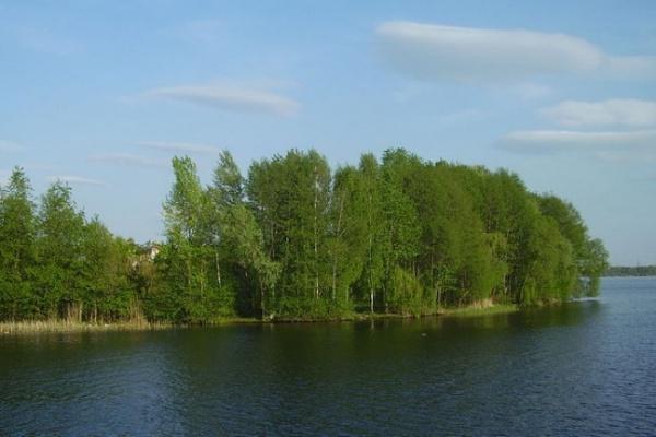 Воронежские монархисты к 400-летнию дома Романовых предлагают создать музейный комплекс на Петровском острове