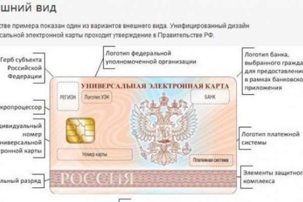 С 1 января жителям Воронежа и области будут выдавать универсальные электронные карты