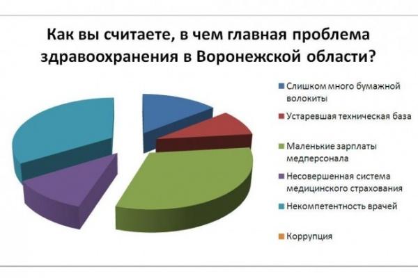 Большинство читателей «ВВ» главной проблемой здравоохранения назвали коррупцию