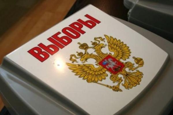 Воронежские полицейские контролируют безопасность выборов