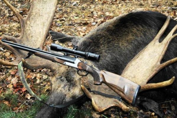 В Воронежской области незаконно отстреливают парнокопытных