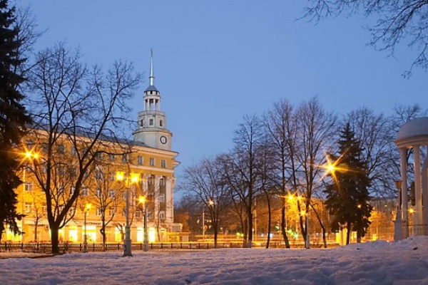 Видовые места Воронежа будут оформлены к Новому году в едином стиле