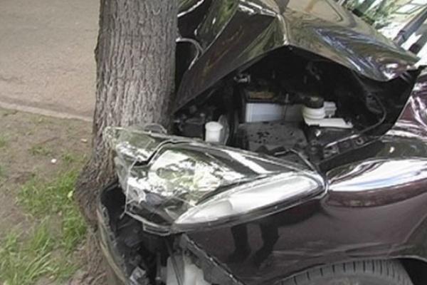 В Воронеже легковушка врезалась в дерево и сломала его
