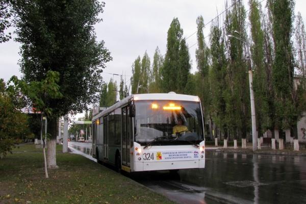 Троллейбус оставят в Воронеже как редкий, вымирающий вид транспорта