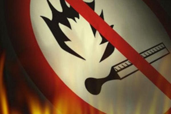 В Воронежской области на пожарах погибло 182 человека