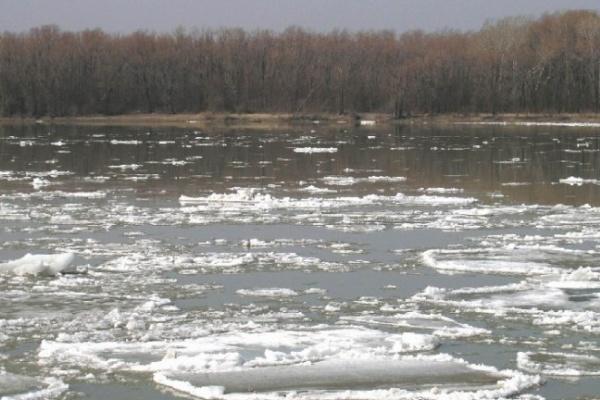В Воронежской области утонул рыбак