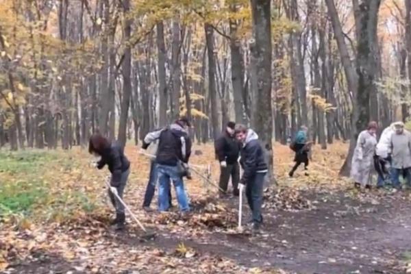 Уникальные деревья в воронежском Дендрарии будут охранять добровольцы