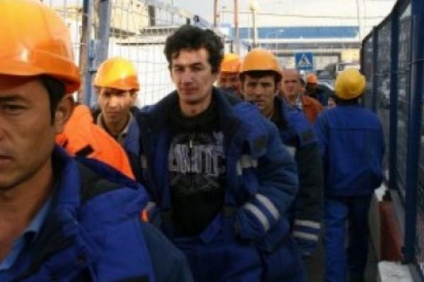 В Воронежской области иностранная рабсила не в почете