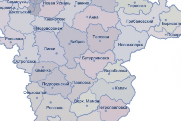 В Воронежской области укрупнения районов не будет