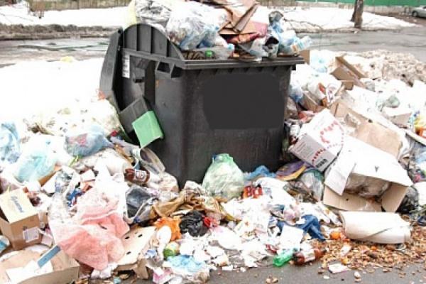 В Воронеже утилизируют мусор на два поля