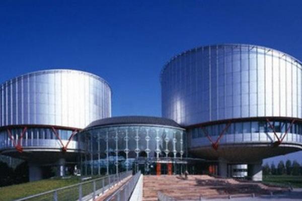 Адвокат СМИ из Воронежа могла бы стать судьей Евросуда?