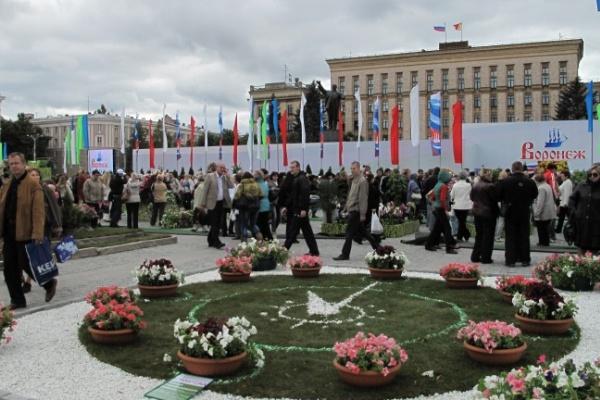 Воронежская область подвергнется сплошному озеленению