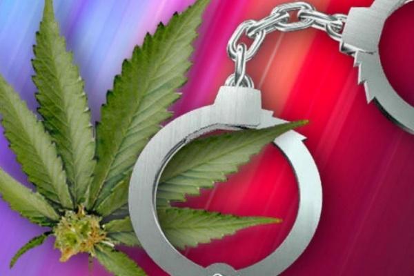 Перекур марихуаной в Воронежской области не состоялся