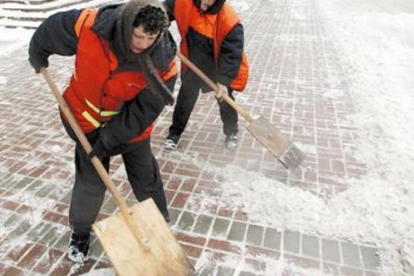 В Воронеже чистота дворов на народном контроле