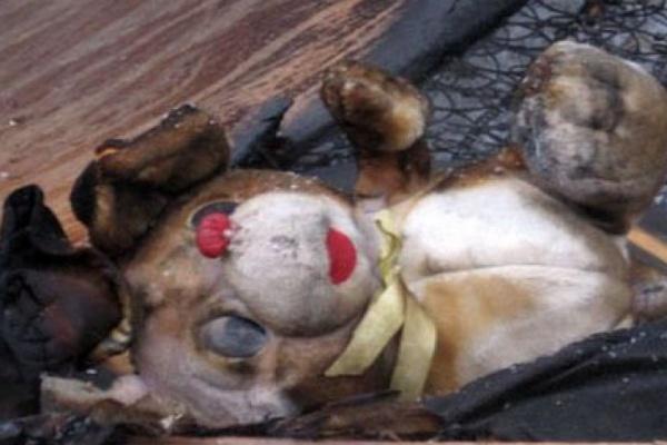 Труп ребенка обнаружен в воронежской многоэтажке