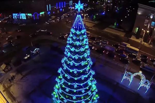 В Воронеже установят и украсят за 1,7 млн рублей прошлогоднюю елку