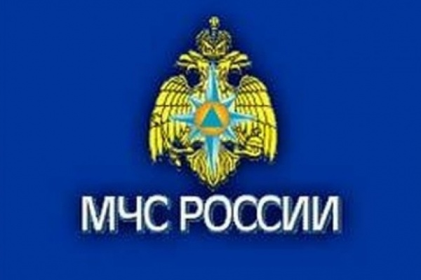 В Воронежской области в период с 14 февраля по 15 февраля произошло 6 пожаров