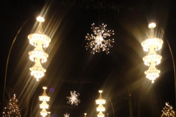 Во всех населенных пунктах Воронежской области в I квартале будет уличное освещение