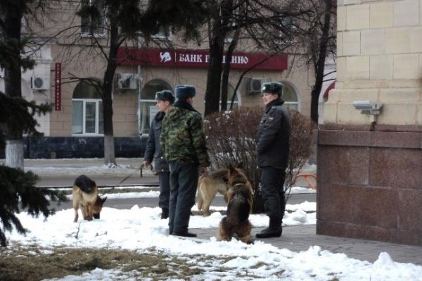 В Воронеже перед визитом Путина у здания правительства области дежурят кинологи с собаками