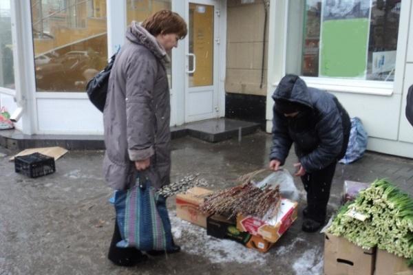 К выходным вербы в Воронеже будут продавать втридорога