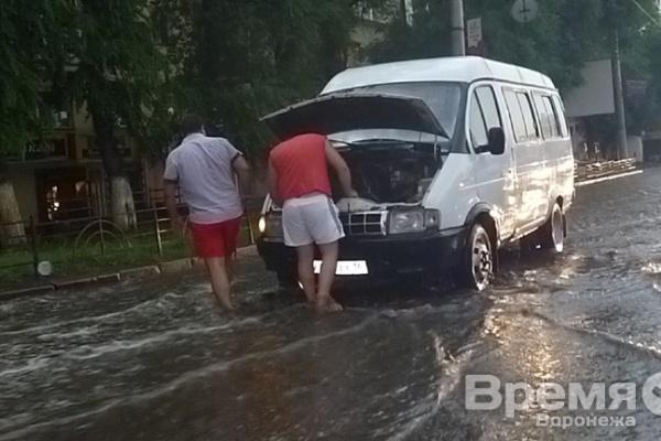 В Воронеже ураган с градом валил деревья и срывал провода