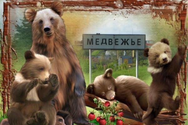 В здание администрации Медвежье под Воронежем нагрянули с выемкой