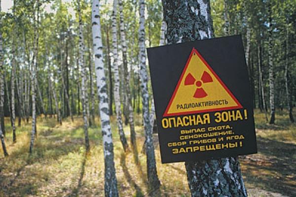Нововоронежская  АЭС забыла отметить  «черный юбилей»