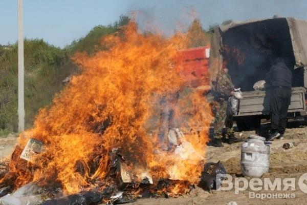 В Воронеже сожгли больше 100 кг наркотиков