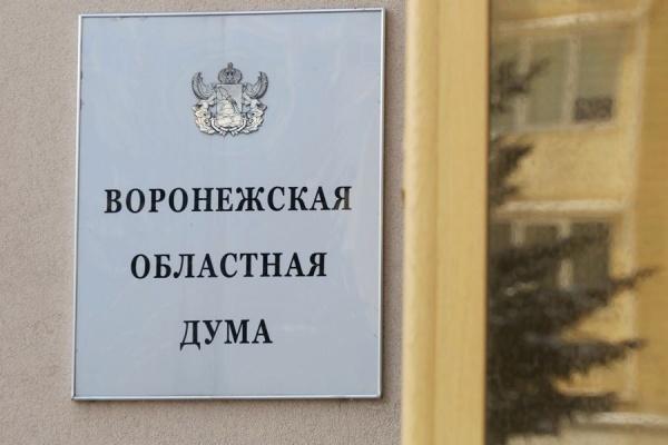 Депутаты от оппозиционных партий займут 8 мест в воронежской облдуме