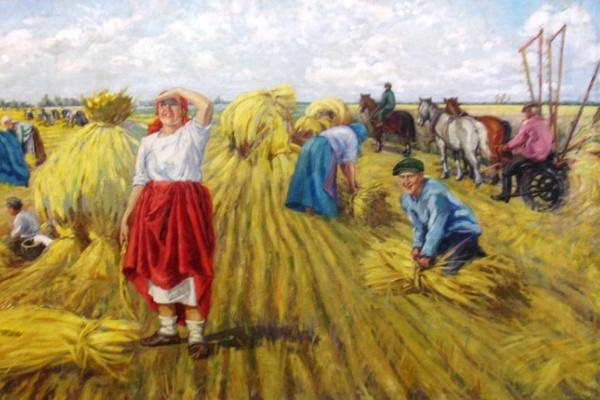 Урожай зерна в Воронежской области обещает стать самым богатым в новейшей истории региона