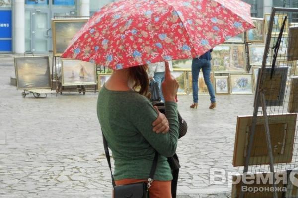 МЧС: На Воронеж идёт град с грозой и сильным ветром
