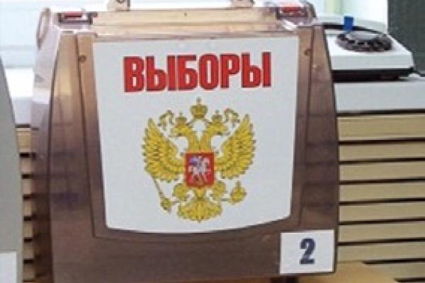 Воронежская область стала чемпионом  мира по голосованию на дому